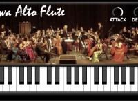 Iowa Alto Flute