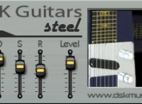 Guitars Steel